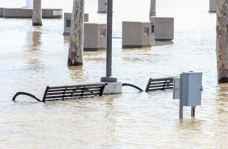 Benches and trees flooded