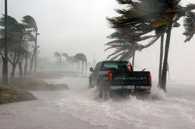 Pickup truck driving though flooded beach and palm trees swaying in the wind