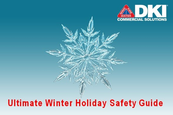 DKI Ultimate Winter Holiday Safety Guide snowflake graphic
