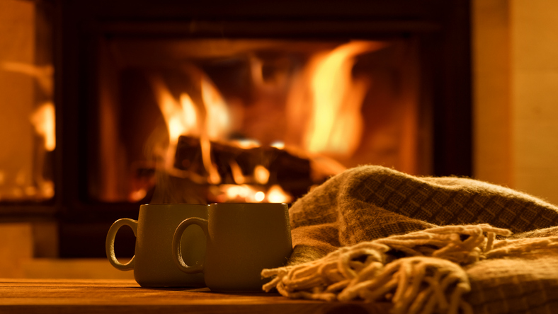 Image result for fireplace safety