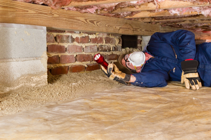 Man inspecting for termites in crawl space
