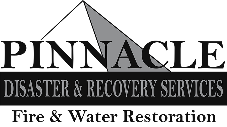 Disaster & Recovery Services Logo