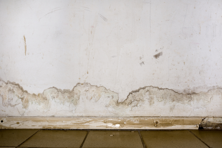 Flooding rainwater or floor heating systems, causing damage, peeling paint and mildew.