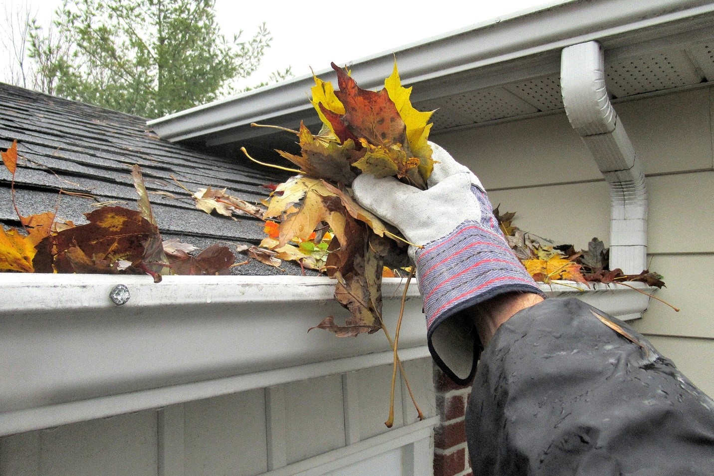 Gutter Cleaning 101 2